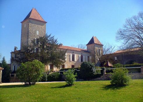 210-chateau-de-triaux - Image 1 - Les Brévières - rentals