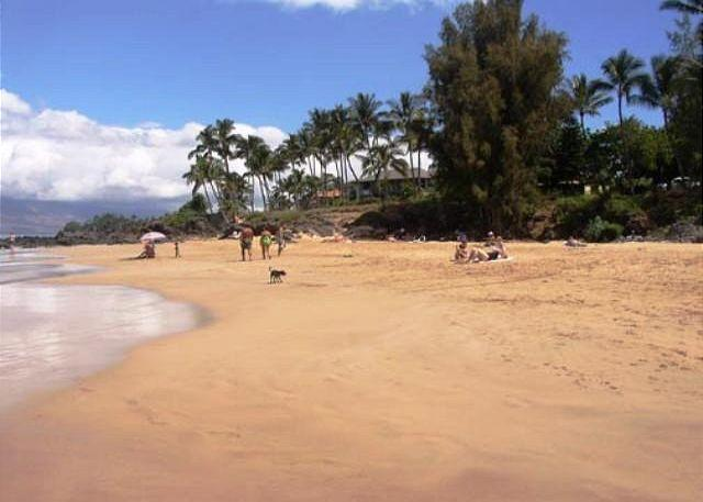 Kamaole Beach #1 Just Across from The Maui Vista - Steps to Kamaole Beach #1 Remodeled Maui Vista 1 Bd 1 Bath Great Rates! - Kihei - rentals
