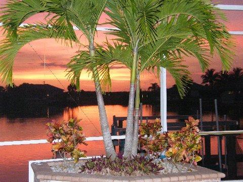 Luxury waterfront home on a lake with Gulf access - Image 1 - Cape Coral - rentals