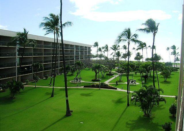 Maui Sunset 401A - Image 1 - Kihei - rentals
