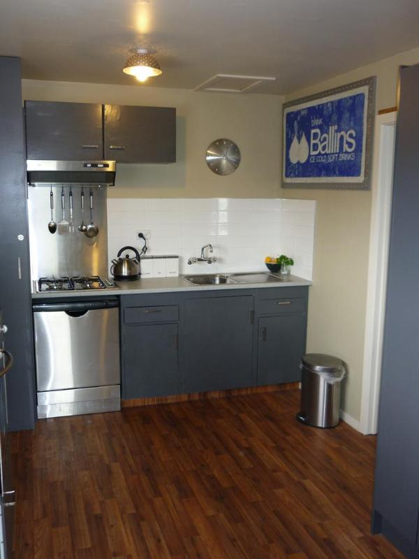 Fully equipped kitchen - Pinedale Apartment - Methven - rentals