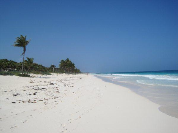 yes, this is our beach ! - Stunning private beach home on  the Caribbean - Tulum - rentals