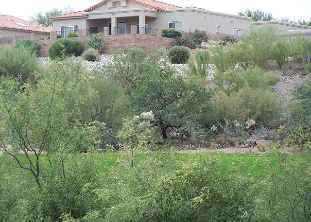 Peaceful retreat in this 1st Floor Corner Condo  Golf Views & secluded patio - Image 1 - Tucson - rentals