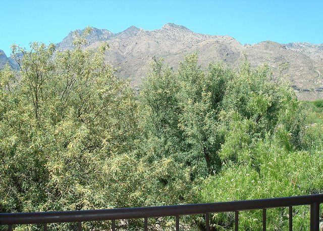 View from Balcony - Second Floor condo with Mountain Views - Tucson - rentals