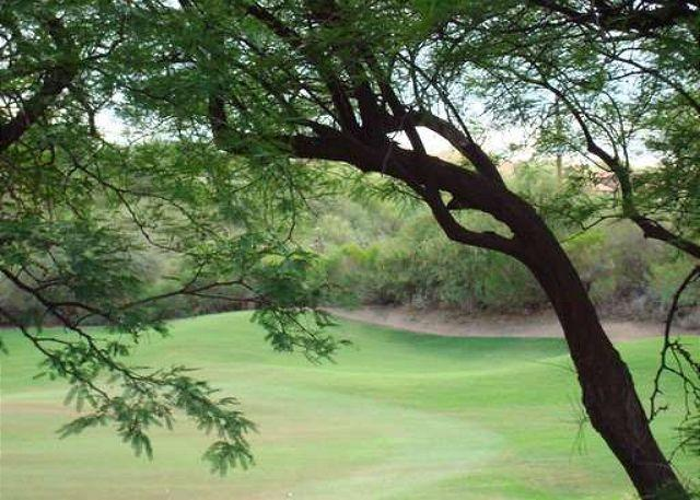 Balcony view - Second Floor Condo with Golf Course Views - Tucson - rentals