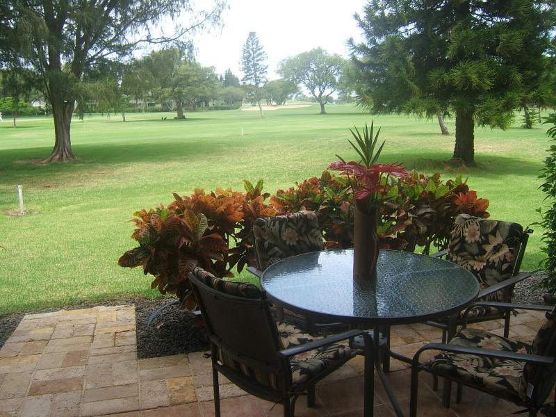 Gorgeous golf course views Open Dec. 18-Jan.6 - No longer accepting reservations....SOLD - Waikoloa - rentals