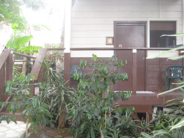 Like an free-standing hotel room surrounded by tropical foliage. - Experience Hawaiian Paradise! Secluded Tropical  Hideaway on Coffee Farm!! - Captain Cook - rentals