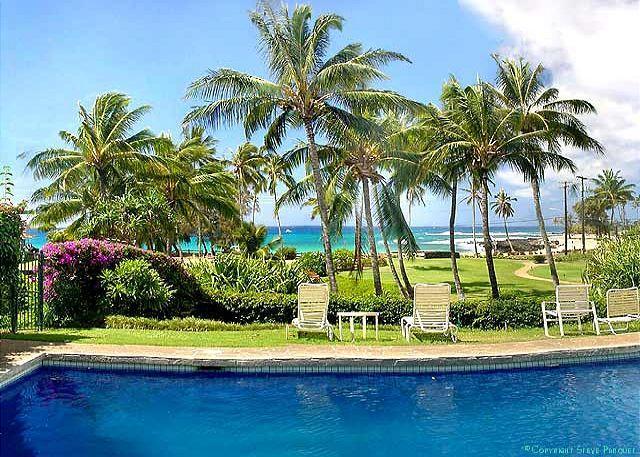 Manualoha pool - Manualoha Condo - Steps from Poipu Beaches, Snorkeling & Surf! - Poipu - rentals