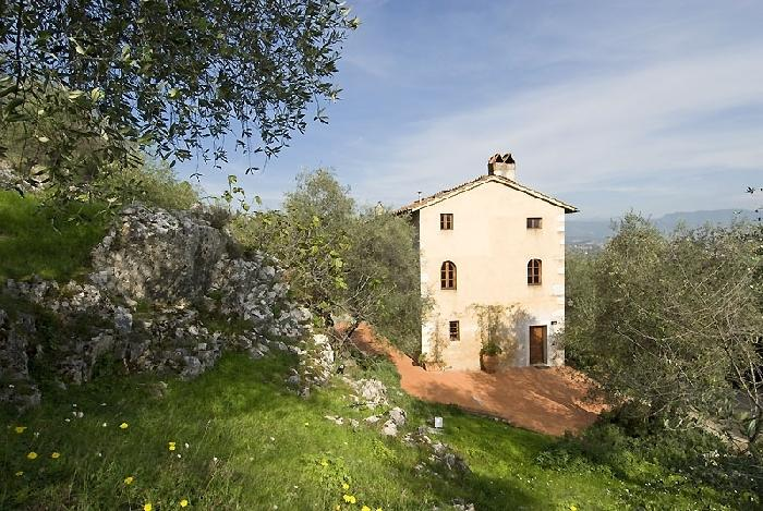 Villa Oliva Holiday house near Lucca - Image 1 - Lucca - rentals