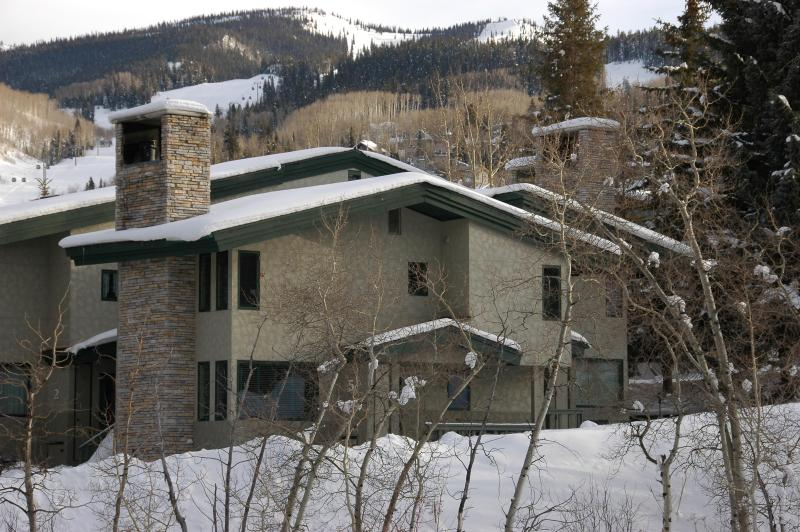 Tamarack #5 with Snowmass slopes in background - Slopeside 2BR/2BA Tamarack Townhouse - Snowmass Village - rentals