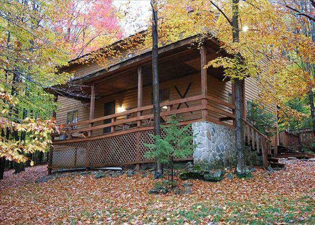 Welcome to Otters Den!~ - Comfortable Mountain Retreat - Canaan Valley - rentals