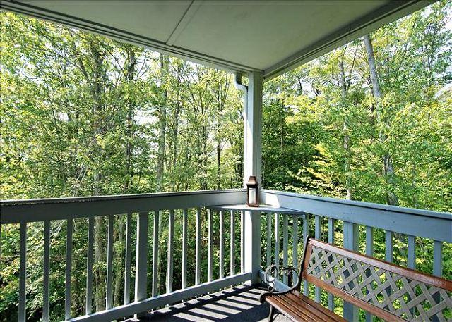 Amazingly affordable lodging in the center of Canaan Valley! - Image 1 - Canaan Valley - rentals
