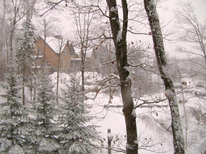 Our Les Manoirs Condo - Escape To Tremblant - Mont Tremblant - rentals