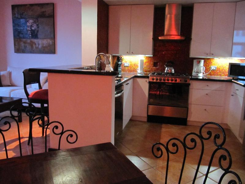 Modern American kitchen - Spectacular 1 or 2 bedrooms loft in Casco Viejo - Panama City - rentals