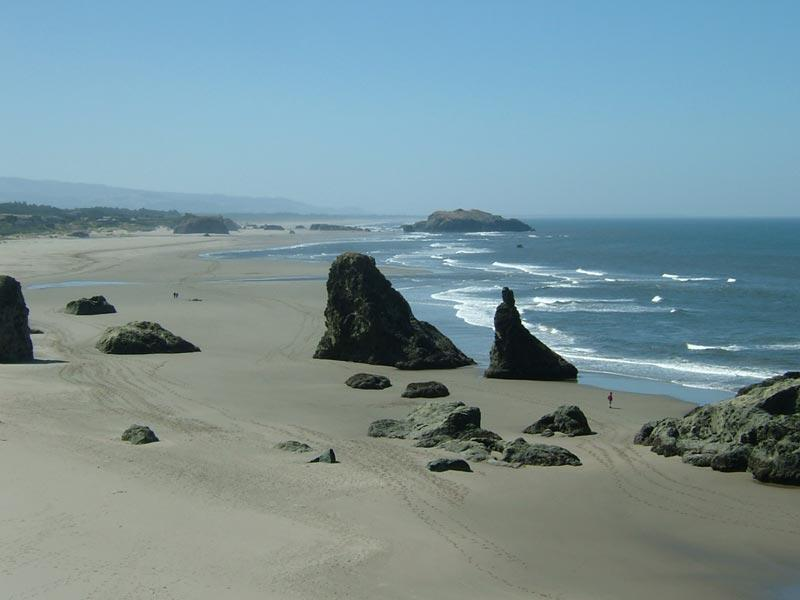 Beach at End of Path - You Can Walk for Miles in Either Direction - Steps to Best Beach,No Stairs!,Couples,May 18-25!! - Bandon - rentals