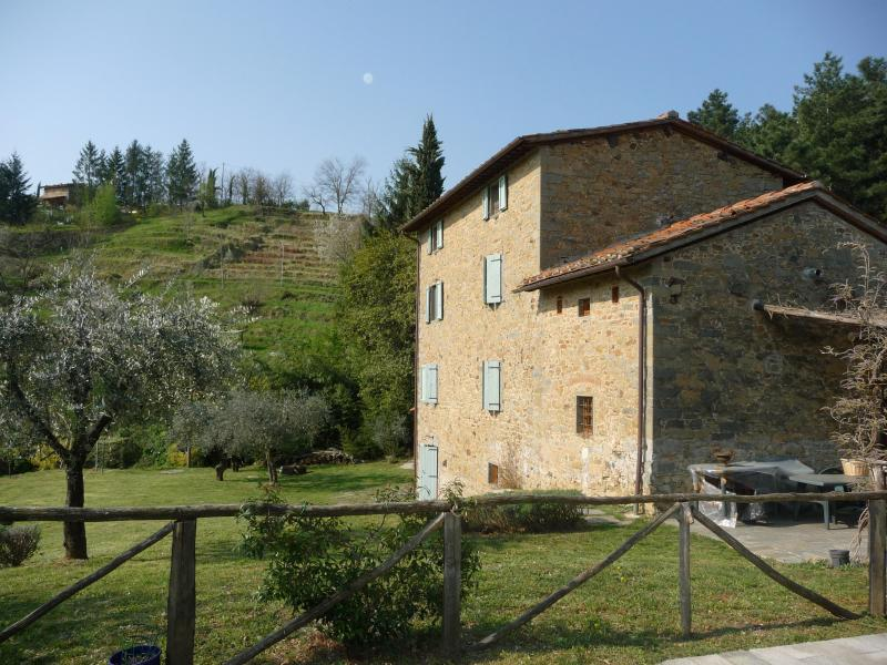 The back garden - 5 bed farmhouse & pool between Lucca and Florence - Pescia - rentals