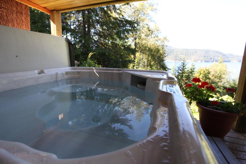 covered hot-tub with lakeview - Raspberry Hill,  sauna , hot-tub , with lake view - Nelson - rentals