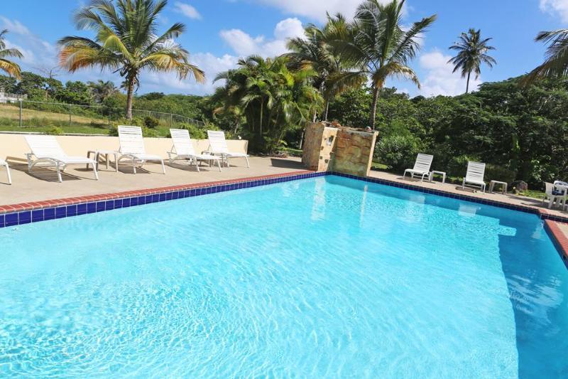 The 20x40 foot pool at Casa Ladera - The Villa at Casa Ladera: Pool, steps to the beach - Isla de Vieques - rentals