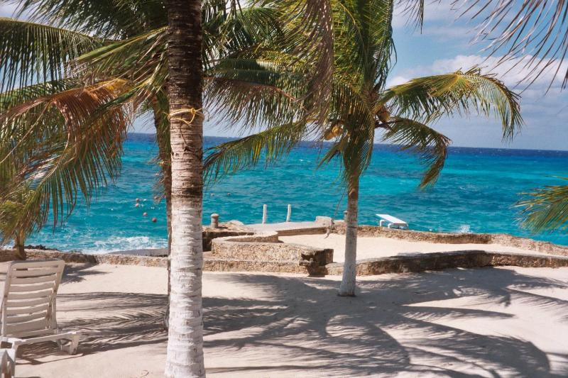 Stunning Caribbean out our back door! - Cozumel Paradise Condo: Quiet Elegance by the Sea - Cozumel - rentals