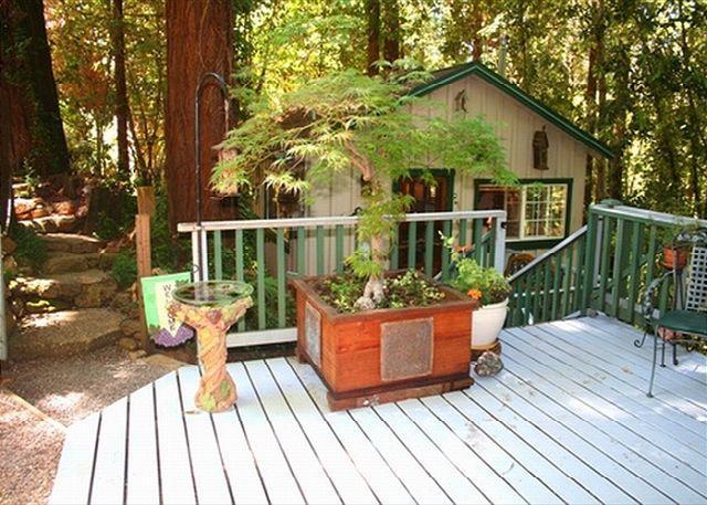 Guerneville Front Big - Guerneville Cottage, Decks, Skylight,Hot Tub! - Guerneville - rentals