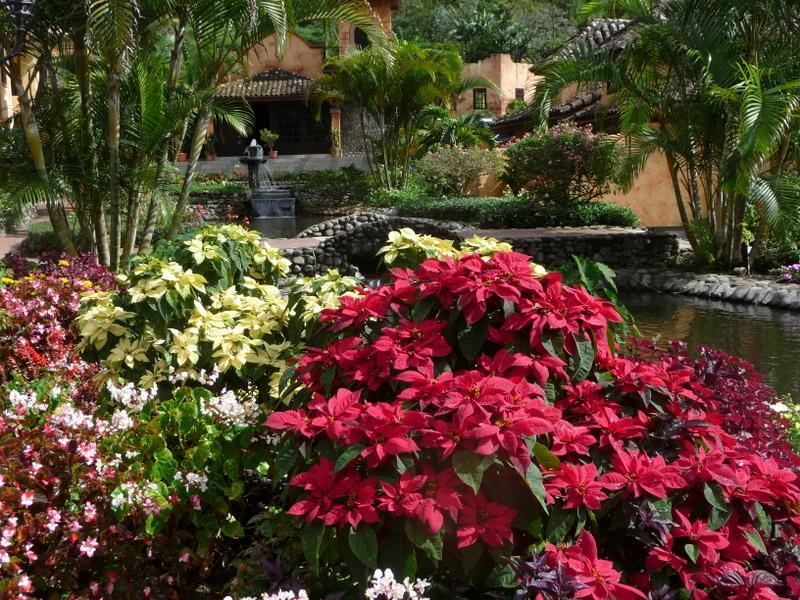 Valle Escondido - Luxury Studio in idyllic Valle Escondido Resort - Boquete - rentals