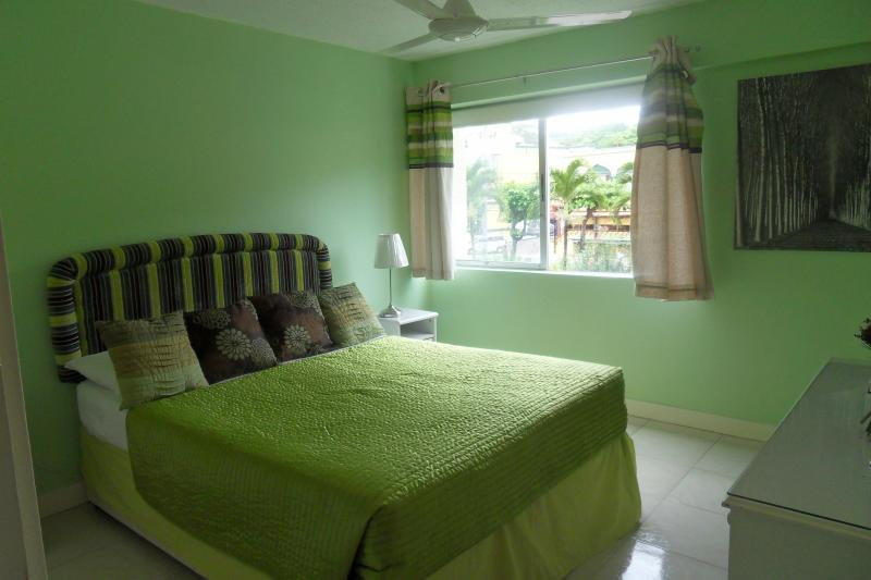 Double Bedroom - One Bedroomed Apartment in Ocho Rios, Jamaica - Ocho Rios - rentals
