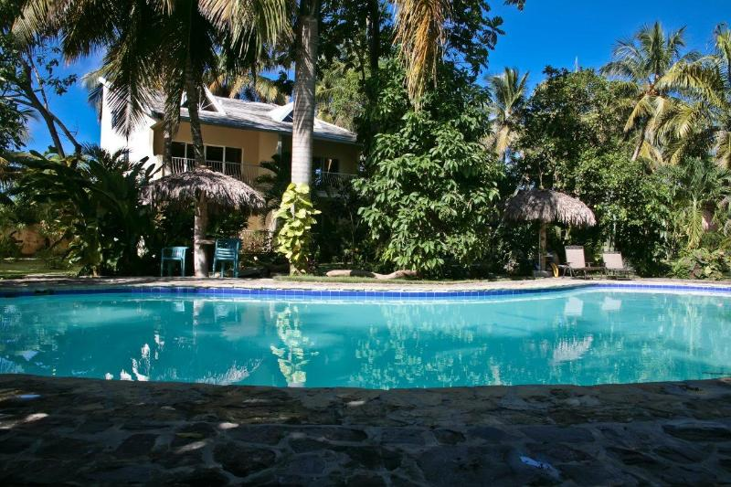 Lush tropical garden screens condos from pool - Beachside Vacation Condo at Cabarete's Vecinos - Cabarete - rentals