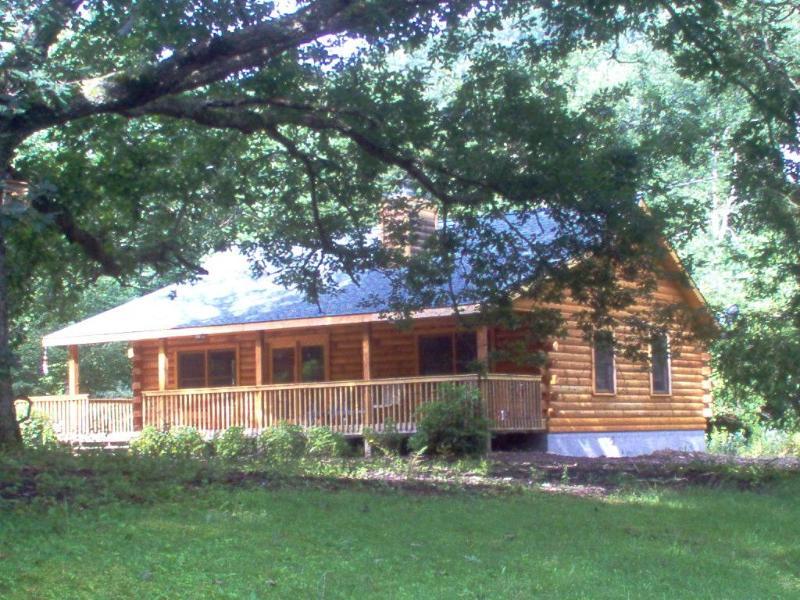 Serendipity Cabin - Serendipity Cabin at Mt. Mitchell - Burnsville - rentals