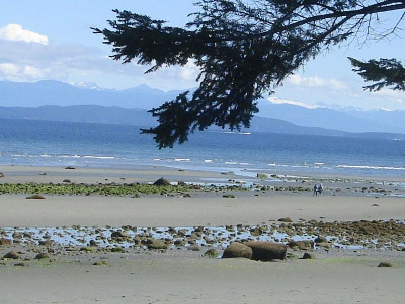 Enjoy this view relaxing in Sealbourne Hot Tub - Sealbourne - Heaven At Your Doorstep - Qualicum Beach - rentals
