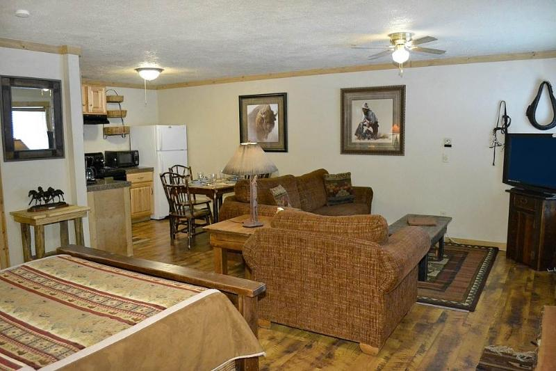 Eagles Rest Studio - Image 1 - Teton Village - rentals
