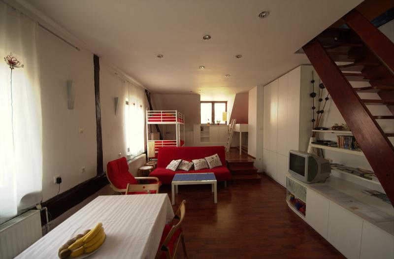 View of the living room and downstairs bedroom (from the kitchen area) - Close to Central - Ljubljana - rentals