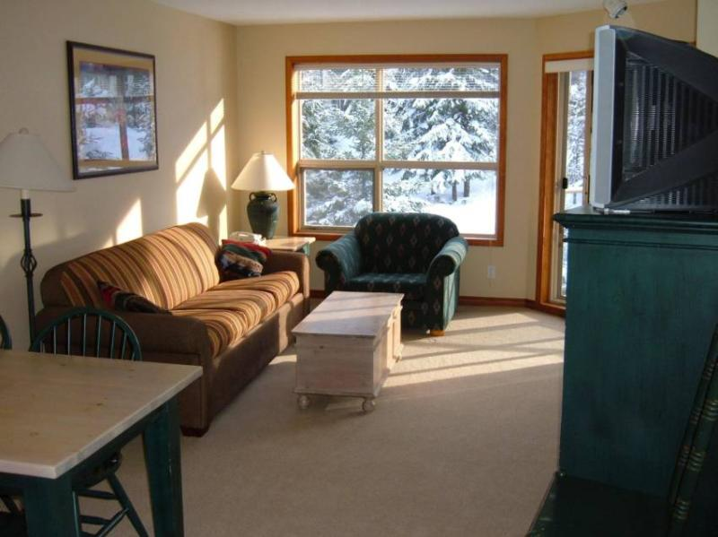Warm Cozy Living Room with Fireplace and Views Toward Whistler Mountain and the Blackcomb Ski Slope! - Whistler All Seasons - Whistler - rentals