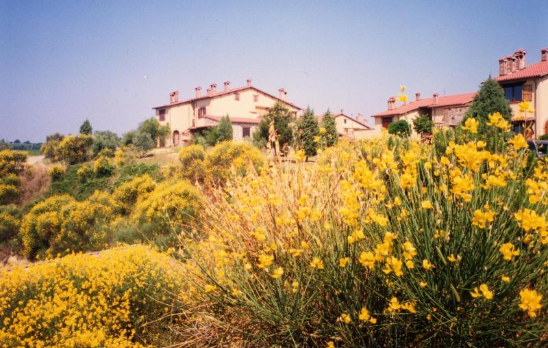 Apartment in the heart of Umbria, Orvieto-Ficulle - Image 1 - Ficulle - rentals