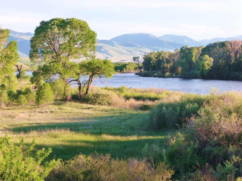 The view toward Yellowstone from the Property - Yellowstone River Hot Tub-Fish-Spring openings! - Gardiner - rentals