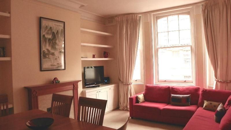 Lounge Area - Central London, Nr Oxford St, spacious 2BR, 2 Bath - London - rentals