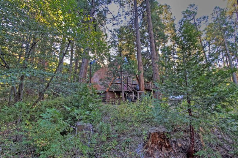 Welcome to Idyllcreek A-Frame Vacation Cabin in beautiful Idyllwild, Califorina - Special - $139/night Midweek through 9/30! - Idyllwild - rentals