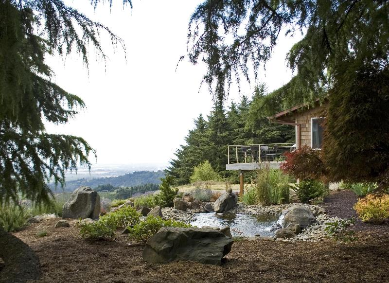 Privacy and beauty, view as you come upon the house down the tree lined driveway - Vineyard Ridge - Best View in OR Wine Country - Dundee - rentals