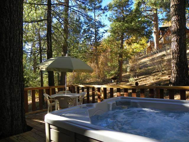 Happy Bear - Image 1 - Big Bear Lake - rentals