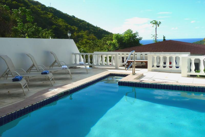 Pool - Serendipity House, Pool, sleeps 1-10 - Tortola - rentals