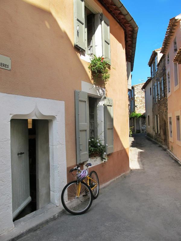 Entrance La Maison Verte in rue des Lavandieres - Lovely 3 bedroom  village house,  Caunes-Minervois - Caunes-Minervois - rentals
