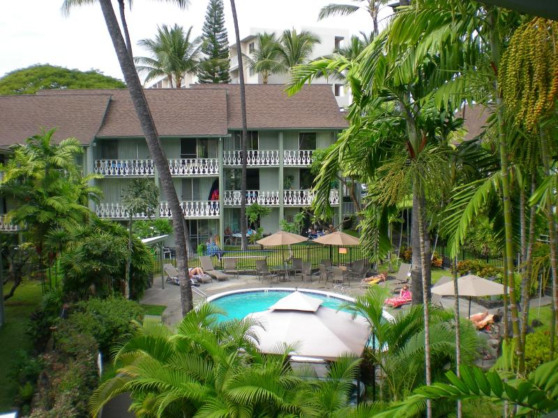 Standing on the lanai overlooking the gardens and pool area.  Great Barbque area also! - PERFECT Location in the heart of Kailua Kona, HI - Kailua-Kona - rentals