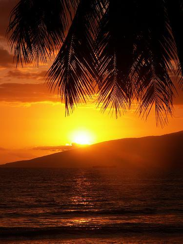 Maui Vacation Villa, Ocean Views, Pool  Waterfalls - Image 1 - Lahaina - rentals