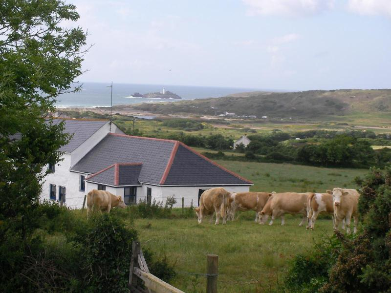 A breathtaking view to Godrevy lighthouse - Pennance Vean Farm luxury seaview barn Gwithian - Gwithian - rentals