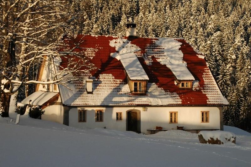 Countryhouse Hinterbreiteneben - Image 1 - Lackenhof am Otscher - rentals