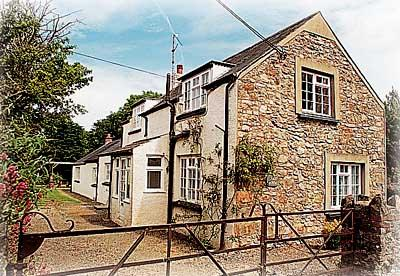 Pet Friendly Holiday Home - Cross House, Dinas - Image 1 - Dinas Cross - rentals