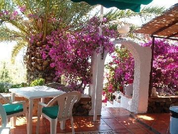 Terrace - Finca Huerta Tropical, B&B, 4 doubles, all ensuite - Torre del Mar - rentals