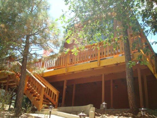 Front View - Tree Top Villa - Big Bear City - rentals