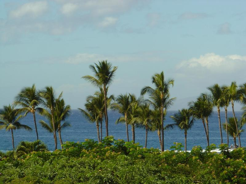 Ocean View From Dining Room - Ekahi-2A Lower Village, Ocean Views and Sunsets - Wailea - rentals