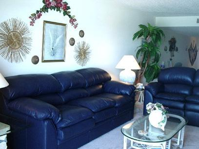 Dolphins Say...Don't Miss This One! - Image 1 - Indian Shores - rentals