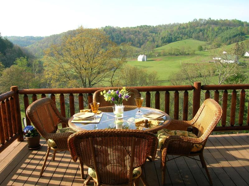 Your own restaurant with a view - Upscale Log Home - Dugspur - rentals
